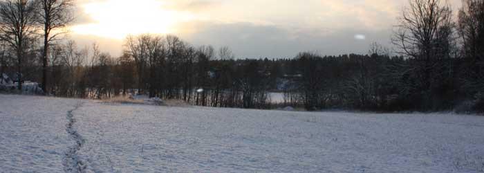 Vinterspår